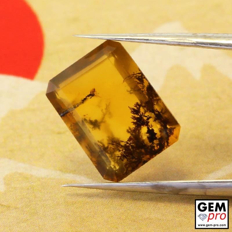 Opale Dendritique 2.40 carats Forme Octogonal Gemme de Madagascar