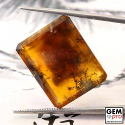 Orange Moss Opal 17.00 ct Octagon from Madagascar Gemstone
