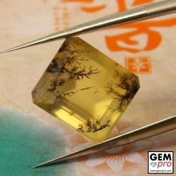 Orange Dendritic Moss Opal 5.12 ct Octagon from Madagascar Gemstone