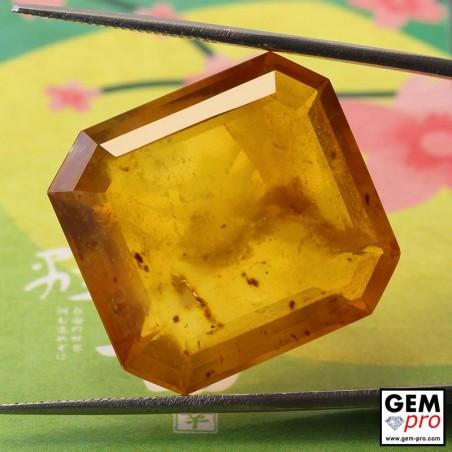 Opale Dendritique 29.90 carats Forme Octogonal Gemme de Madagascar