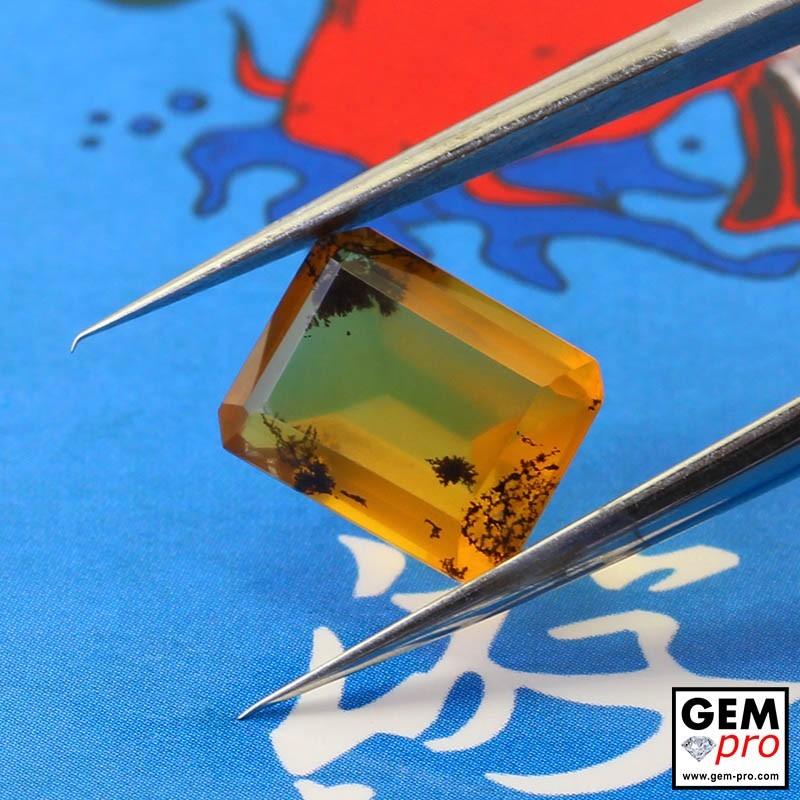 Opale Dendritique 2.22 carats Forme Octogonal Gemme de Madagascar