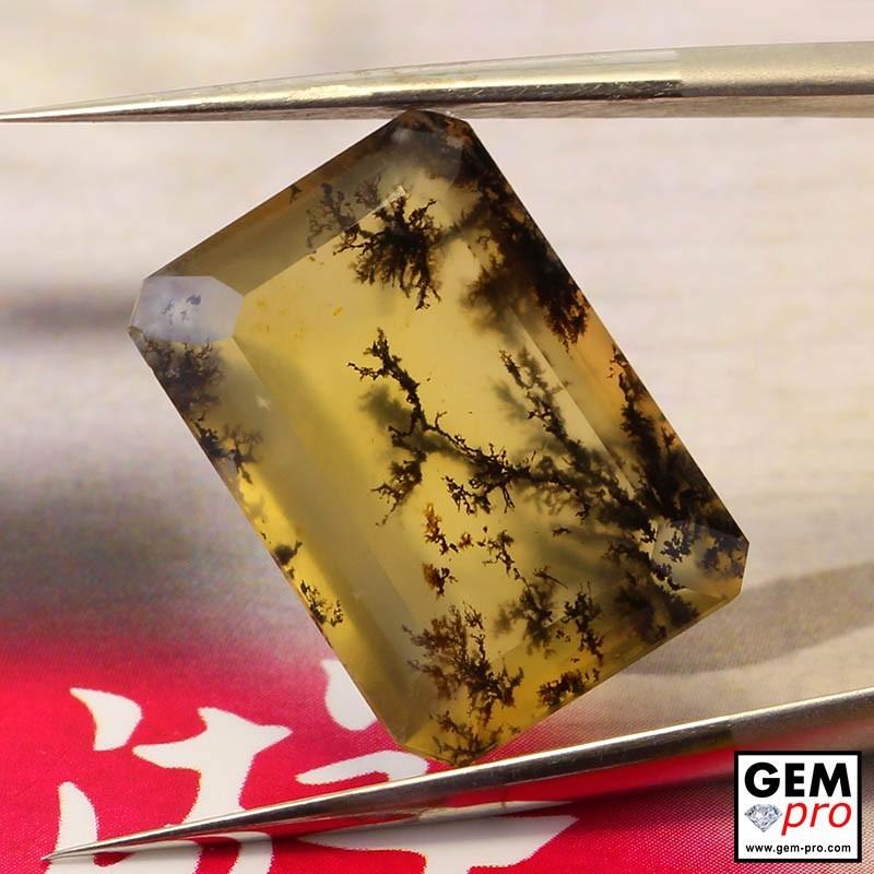 Opale Dendritique 7.76 carats Forme Octogonal Gemme de Madagascar