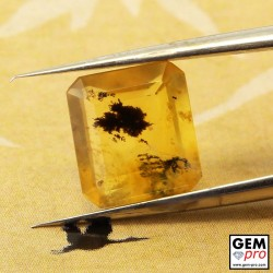 2.02ct Moss Opal Octagon Cut 9 x 8 mm Natural Gemstone from Madagascar