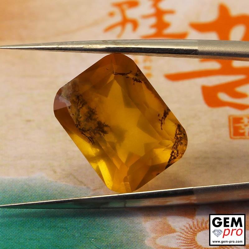 Opale Dendritique 4.37 carats Coussin Gemme de Madagascar