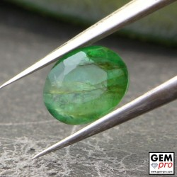 0.44 Carat Green Emerald Gem from Zambia