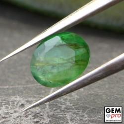 Émeraude Verte 0.44 carat Taille Ovale Gemme de Zambie