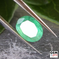 0.57 Carat Green Emerald Gem from Zambia