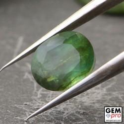 Émeraude Verte 0.99 carat Taille Ovale Gemme de Zambie