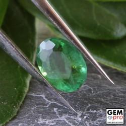 Émeraude Verte 0.26 carat Taille Ovale Gemme de Zambie