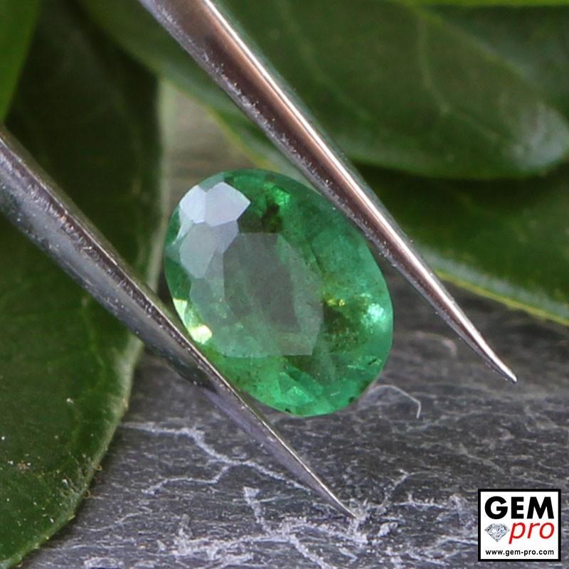 0.26 Carat Green Emerald Gem from Zambia