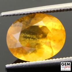 Opale de Feu Jaune 2.74 carats Taille Ovale Gemme de Madagascar