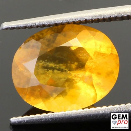 2.74ct Fire Opal A Quality Oval Cut 11 x 9 mm Natural Gemstone from Madagascar