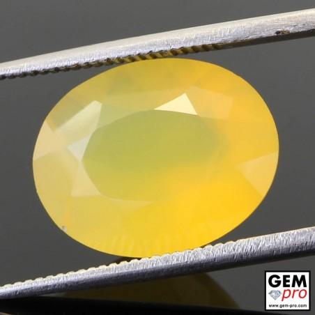 Opale de Feu Jaune AA 4.92 carats Taille Ovale Gemme de Madagascar
