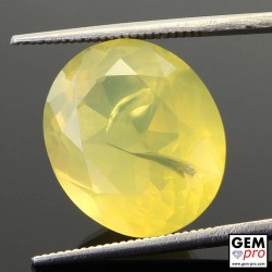 10.38ct Lemon Fire Opal A Quality Round Cut 16 x 14 mm Natural Gemstone from Madagascar