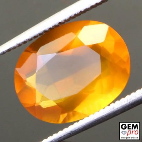 Opale de Feu Orange AA 3.51 carats Taille Ovale Gemme de Madagascar