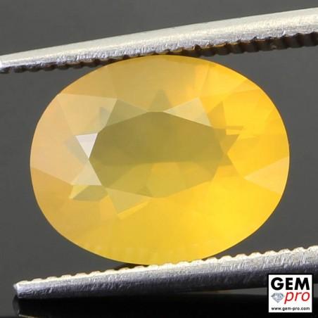 Opale de Feu Jaune AA 2.45 carats Taille Ovale Gemme de Madagascar