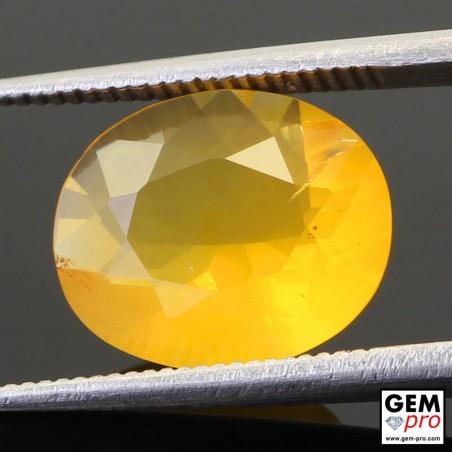 Opale de Feu Jaune AAA 2.92 carats Taille Ovale Gemme de Madagascar