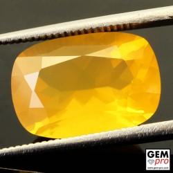 Opale de Feu Jaune AAA 5.15 carats Taille Coussin Gemme de Madagascar
