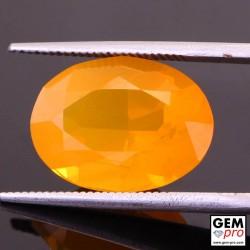 6.20 Carat Orange Fire Opal AAA Gem from Madagascar