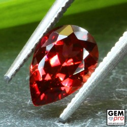Red Almandine Garnet 1.47 Carat Pear from Madagascar Gemstones