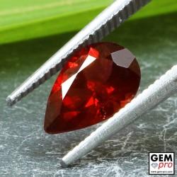 Red Almandine Garnet 1.80 Carat Pear from Madagascar Gemstones
