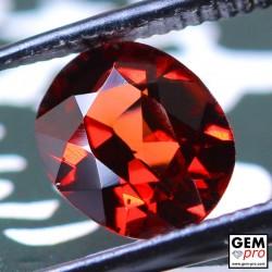 Red Almandine Garnet 1.65 Carat Oval from Madagascar Gemstones