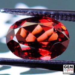 Red Almandine Garnet 2.46 Carat Oval from Madagascar Gemstones
