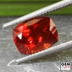 Red Almandine Garnet 2.2 Carat Cushion from Madagascar Gemstones