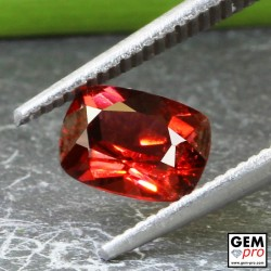 Red Almandine Garnet 1.22 Carat Cushion from Madagascar Gemstones