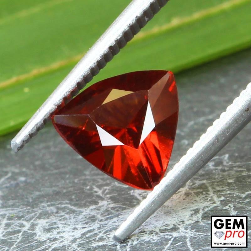 Red Almandine Garnet 1.75 Carat Trillion from Madagascar Gemstones