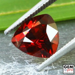 Red Almandine Garnet 2.63 Carat Trillion from Madagascar Gemstones