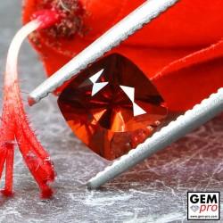 Red Almandine Garnet 1.30 Carat Cushion from Madagascar Gemstones