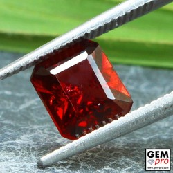 Red Almandine Garnet 1.99 Carat Octagon from Madagascar Gemstones