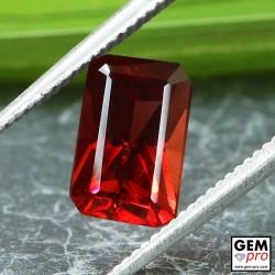 Red Almandine Garnet 2.00 Carat Octagon from Madagascar Gemstones