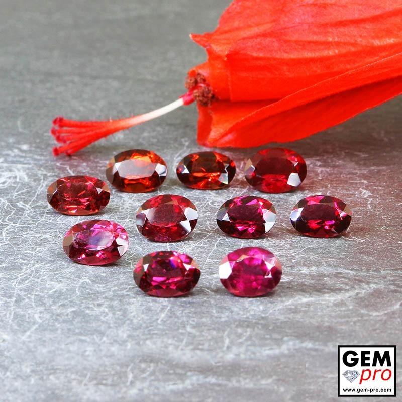 Grenat Almandin 10 p. 9.52 carats Taille Ovale Gemme de Madagascar