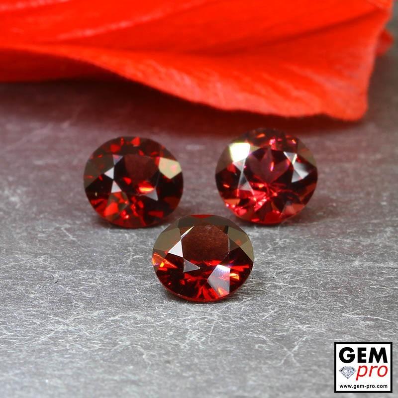 Red Almandine Garnet 5.14 Carat (3 pcs) Round from Madagascar Gemstones
