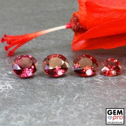 Red Almandine Garnet 3.56 Carat (4 pcs) Round from Madagascar Gemstones