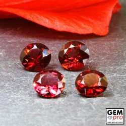 Red Almandine Garnet 5.41 Carat (4 pcs) Round from Madagascar Gemstones