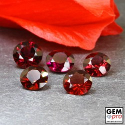 Red Almandine Garnet 7.46 Carat (5 pcs) Round from Madagascar Gemstones