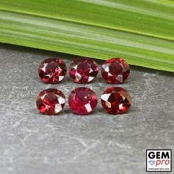 Red Almandine Garnet 3.89 Carat (6 pcs) Round from Madagascar Gemstones