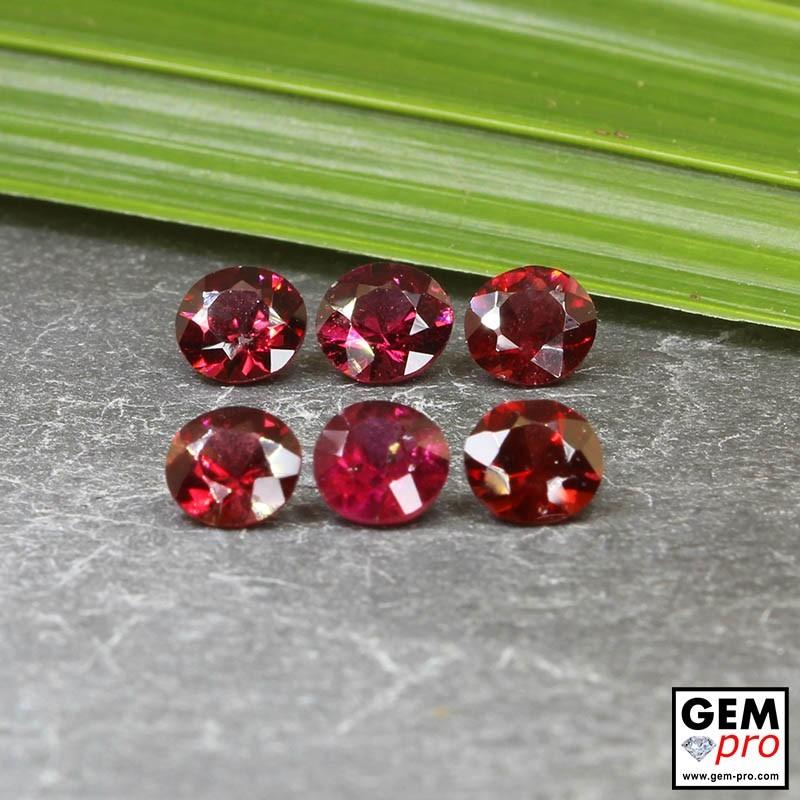 Red Almandine Garnet 3.89 Carat (6 pcs) Round from Madagascar Gemstones
