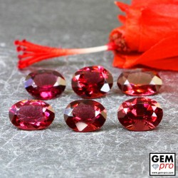 Red Almandine Garnet 6.24 Carat (6 pcs) Oval from Madagascar Gemstones