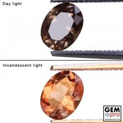 1.04 Carat Grenat Change Couleur Ovale 6.9 x 5.4 mm Gemme de Madagascar