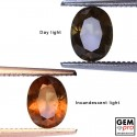 1.05 ct. Grenat Change Couleur
