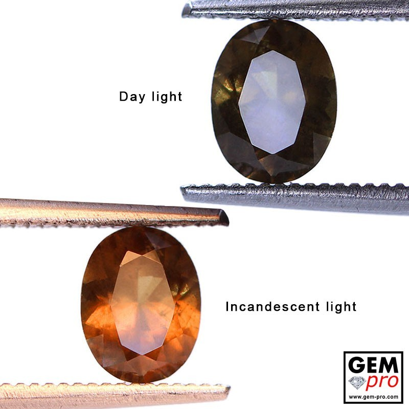 1.05ct Color-Change Garnet Oval Cut 7 x 5 mm Natural Gemstone from Madagascar