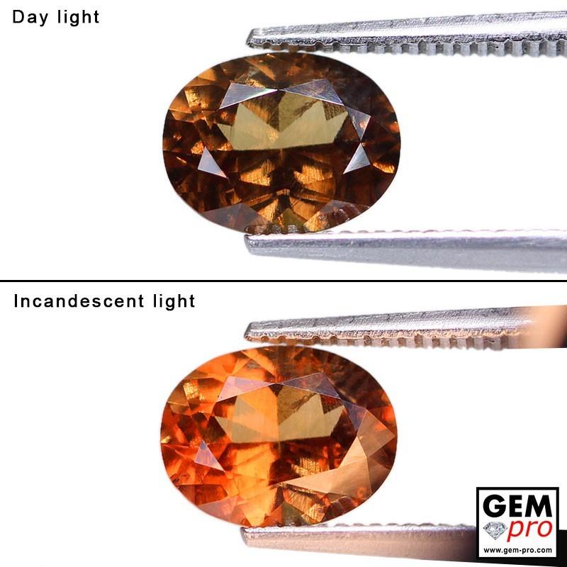 2.15 Carat Grenat Change Couleur Ovale 8.7 x 6.9 mm Gemme de Madagascar