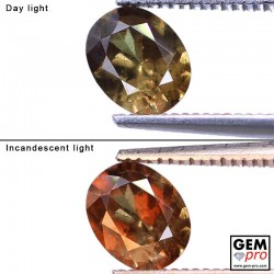 1.11 ct Oval 7.0x5.5 mm Color Change Garnet Gemstone