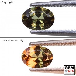 0.95 ct Oval 6.8x5.0 mm Color Change Garnet Gemstone