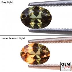 0.95 Carat Grenat Change Couleur Ovale 6.8 x 5.0 mm Gemme de Madagascar