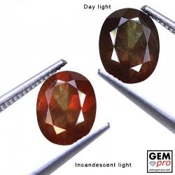 2.22 Carat Grenat Change Couleur Ovale 8.9 x 7.0 mm Gemme de Madagascar